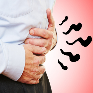 Intestinal Health in Our Senior Loved Ones – To Use or Not to Use Probiotics