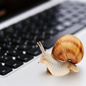Broadband Divide Limits Seniors' Web Benefits – Will Hurt More in Future