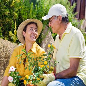 Seniors working in their garden