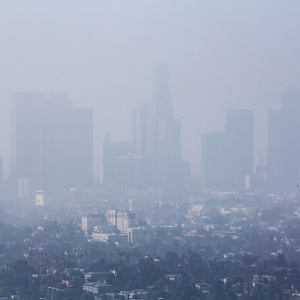 Brain Health & Pollution: Could the Air We Breathe Cause Memory Loss?