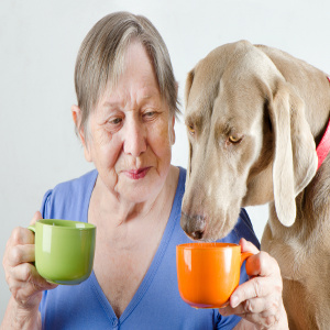 Pet Care – A Family Caregiver Role Often More Important Than Realized