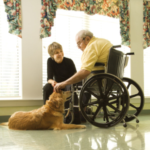 Therapy Dogs Improve Quality of Life for Seniors and Family Caregivers