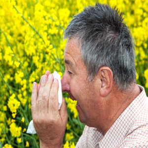 Tips to Fight Seasonal Allergies in Seniors – Family Caregiver Quick Tip