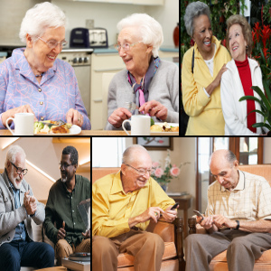 House Sharing – Social and Financial Solution for Many Seniors on the Senior Care Corner® Podcast